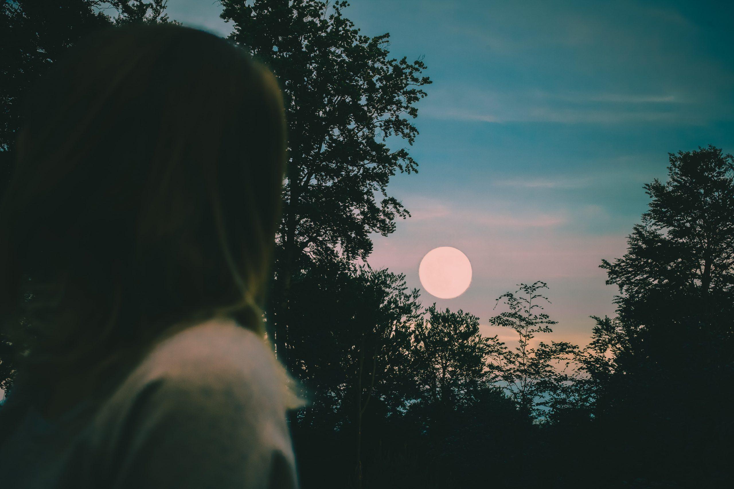 emilia-niedzwiedzka-O0V9uAAuX0Y-unsplash