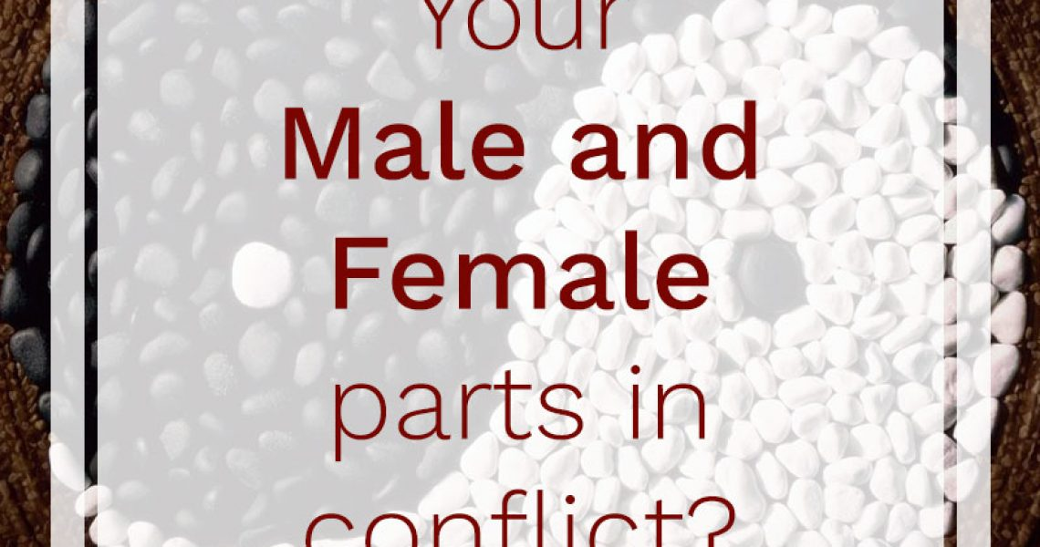 Your-Male-and-female-parts-in-conflict